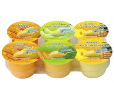 Pudding with Fruit DicesAssortedFlavours 708 GR