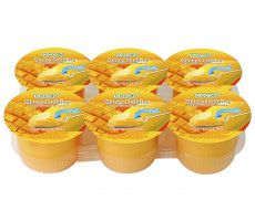 Pudding with Mango Dices 708 GR